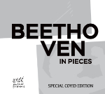 Beethoven in Pieces